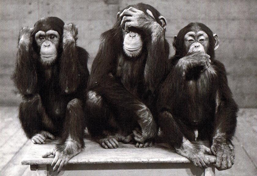 Trois-singes (1)